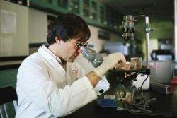 Способ обнаружения патогенных микроорганизмов